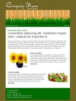lawn_Newsletter